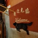 台湾の野良犬について