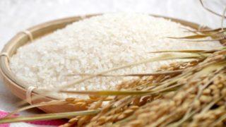 日本からお米の持ち込み